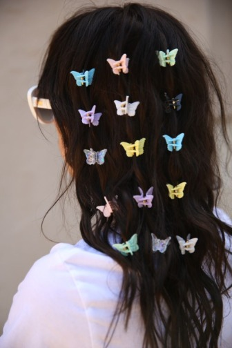 90s-butterfly-clips-tumblr